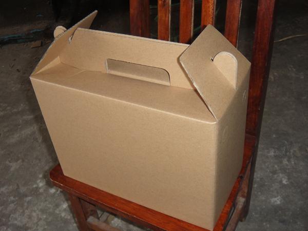 便携式纸箱